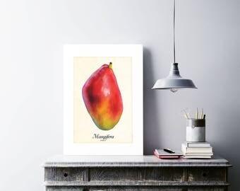 Mango Art Print, Mango Wall Art, Mango Poster, Mango Picture, Botanical Art Print, Fruits Poster, Mango Illustration, Mango Kitchen Art