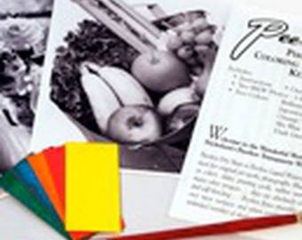 Photo Tinting Kit - Full Color