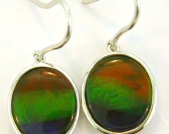 Pair of Natural Three Color Oval  Shaped Canadian AAA Ammolite earrings set in Sterling Silver.