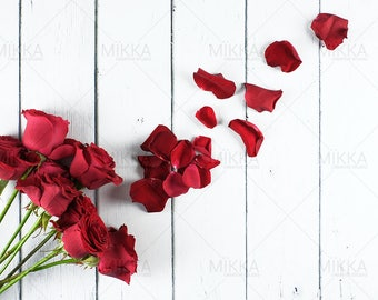 Love Is All Around Collection | Valentine's Day | Styled Stock Photography | Red Roses | Petals | Digital Photography | Flatlay |