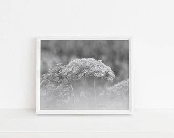 Painterly Black and White Flower Photograph Digital Download