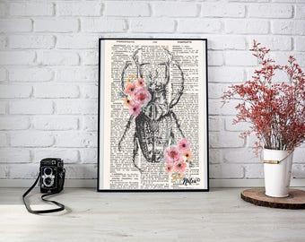 Scarabé floral - PDF