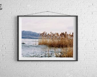 Utah lake landscape (Print)