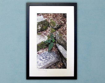 Fern on Mossy Stone Steps - Framed Thread Painting - Modern Quilted Wall Art