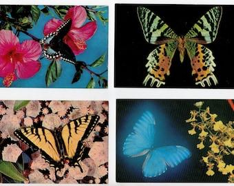 Lot of 4 Rare Butterfly Postcards   Art Butterflies, Tropical, Blue Morpho, Sunset Moth, Moths, Entomologist, Entomology   Paper Ephemera