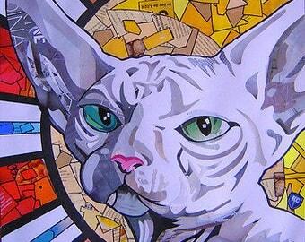 Cat collage sphinx