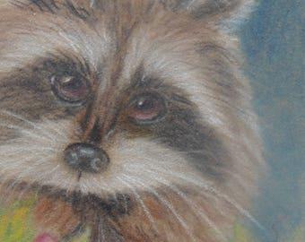 Cute little raccoon in colored pencils on suedeboard
