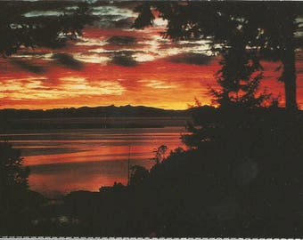 Vintage 1980s Postcard Sunshine Coast British Columbia BC Canada Powell River Stunning Sunset Scenic View Photochrome Postally Unused