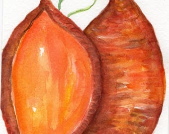 Sweet Potatoes watercolors paintings original, kitchen decor, original Farmhouse decor, sweet potatoes 5 x 7, vegetable watercolor art
