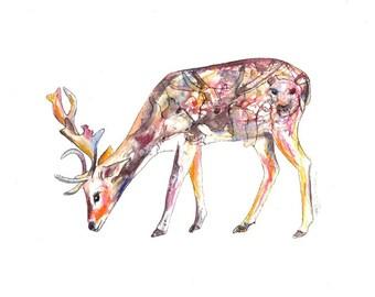 Elk art print watercolor Humpback silhouette 8 x 10 artwork nursery decor home decor