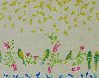 Japanese Fabric Kokka Echino - Bird Song - teal blue - 50cm