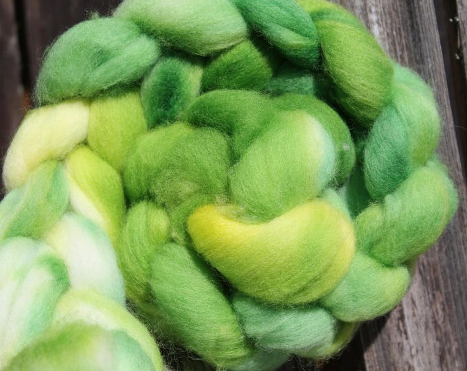 Kettle Dyed Falkland Wool Top.  Soft and easy to spin. 4oz  Braid. Spin. Felt. Roving. F180