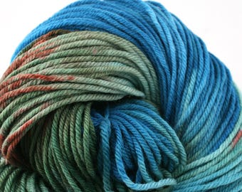Windham 100% US Merino Hand Painted worsted weight 220 yds 201m ~4oz 113g Lerwick Dreams