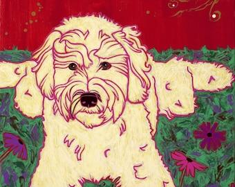 Golden Doodle, Labradoodle Dog Art Print - Designer Dog Art by Angela Bond