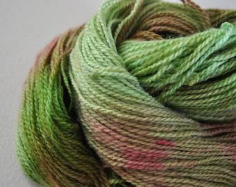Terrarium.  Handpainted Wool yarn 2 Ply Fine/DK weight