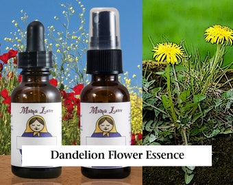 Dandelion Flower Essence, Dropper or Spray for Using Your Strength and Energy in a More Relaxed, Balanced, Fashion