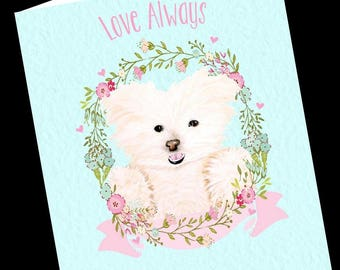 Dog Card-Maltese Frise Greeting Card-All Occasion