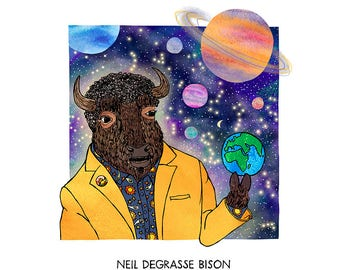 Neil deGrasse Bison - humorous, whimsical, science
