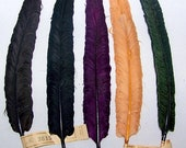 ON SALE Vintage Hat Trim Feather Curled  Germany