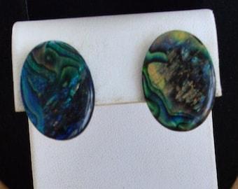 On sale Pretty Vintage Paua Shell Oval Pierced Earrings, Beach, Nautical (T3)