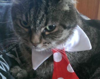 Cat Dress Collar and Tie