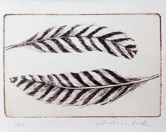 original etching of two stripy feathers