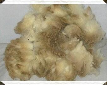 Hampshire cross Wool! (white)