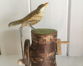 Pecking Thrush