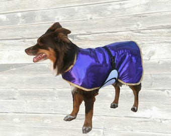Blingy Cool Coat, custom made for your pup with fancy trim, tummy cooler and ice pocket