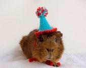 Guinea Pig, Guinea Pig Costume, Guinea Pig Birthday Hat, Blue Party Hat, Rat Hat, Rat Clothes, Guinea Pig Hat, Hedgehog Accessories, Rat Hat