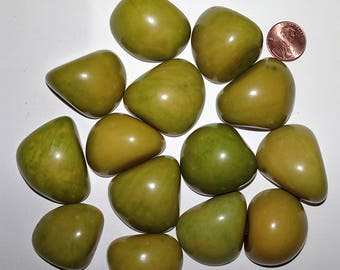 14 Green, Tagua Nut Slices, Top Slices, NOT DRILLED, Organic Beads, Natural Beads, Vegetable Ivory Beads, EcoBeads 20