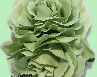 Double Rose Mint Green Flower Clip