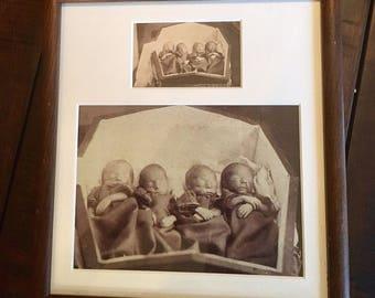 rare & amazing post mortem CDV photo / tiny quadruplets share coffin / 1860s