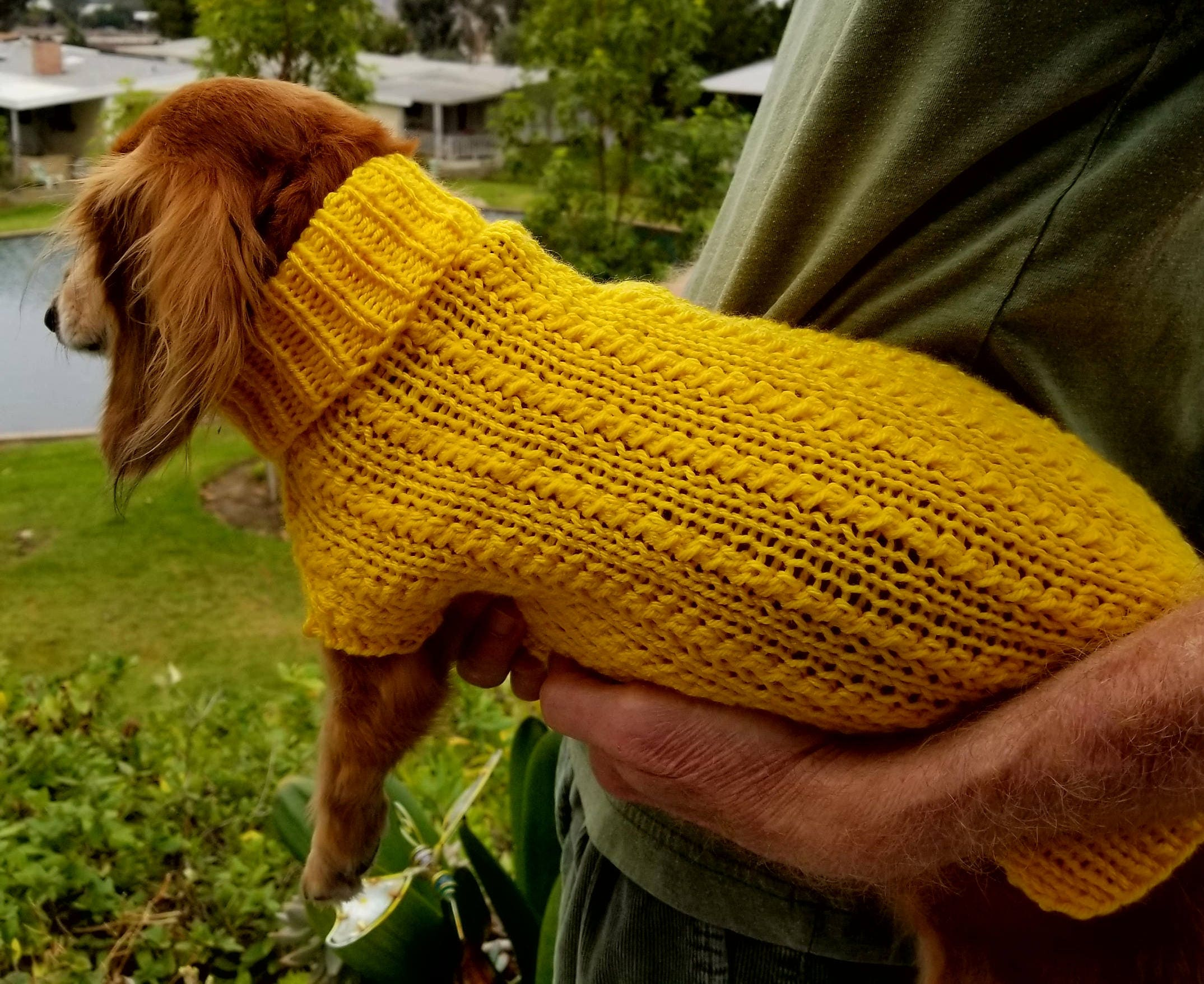 Pdf download for lenas twisty columns miniature dachshund knit pdf download for lenas twisty columns miniature dachshund knit sweater pattern bankloansurffo Gallery