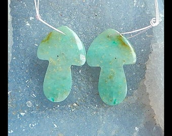 Chrysocolla Gemstone Earring Bead,33x21x4mm,8.4g