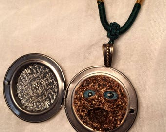 An Enchanted Shavlax. Magical Charm and Locket.