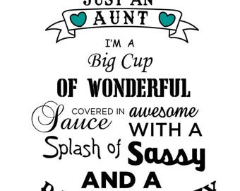 Aunt T-Shirt...Splash of Sassy and a Dash of Crazy Aunt T-Shirt