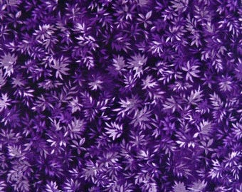 Nature Walk Fabric, by Sentimental Studios, for Moda Fabrics, 100 Percent Cotton, Fabric by the Yard