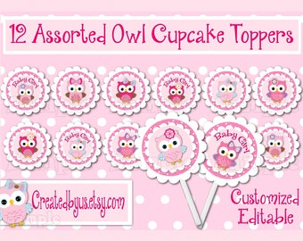 Baby Owl Cupcake Toppers Owl Baby Girl shower Decorations Custom owl favors cupcake picks topper cupcake top Owl birthday party 12 assembled