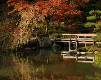 Photo Japanese Garden Seattle, Washington Photo, Wall Decor, Home decor, Autumn Decor, Asian garden decor