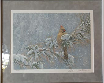 Winter Lady Cardinal. Robert Bateman. Signed. Dated. Numbered. Framed behind glass. Without blemish. Print on paper.