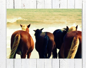 Corolla Wild Horses Photography | Horses on Beach Outer Banks | Coastal Wall Art | Coastal Decor Prints | Coastal Artwork Beach Home Decor