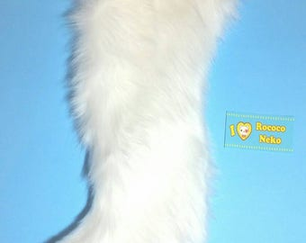 White kitten tail