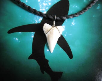 "Shark Tooth Necklace, ""Surfer Style"", Modern day White Shark tooth, Stainless Steel wire wrap, Water resistant cord"
