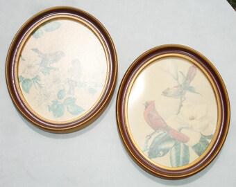 Vintage Oval Frames with Bird Prints - Vintage Home Decor