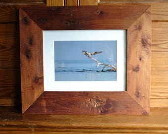 "The Guardian: 6x9"" osprey print framed in reclaimed wood"