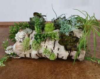 Succulent centerpiece , woodland Centerpieces, Wedding , home decor, Centerpieces, wedding centerpiece, ready to ship,  sola flower, wood