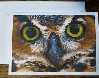 Nature Photography, Great Horned Owl, Note Card, Thinking of You, Thank You