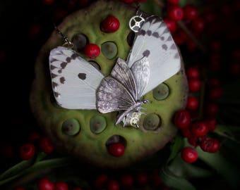 Collier droit véritables ailes de papillon Chrysalide Calypso