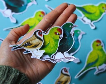 Stickybeaks ~ illustrated BIRD stickers ~ 5 pack sticker set